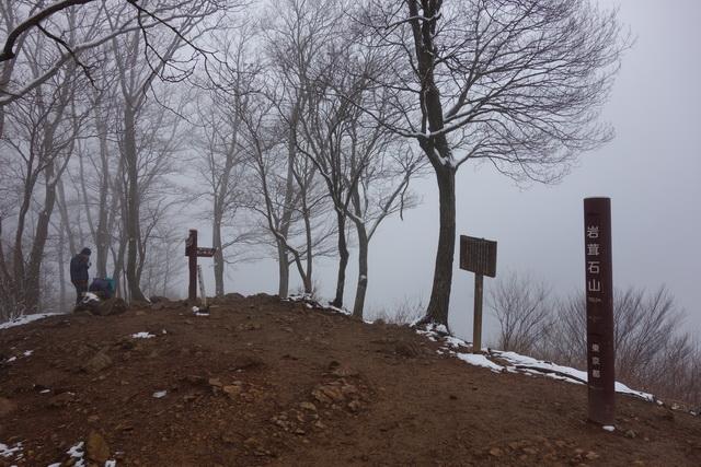 岩茸石山の山頂風景