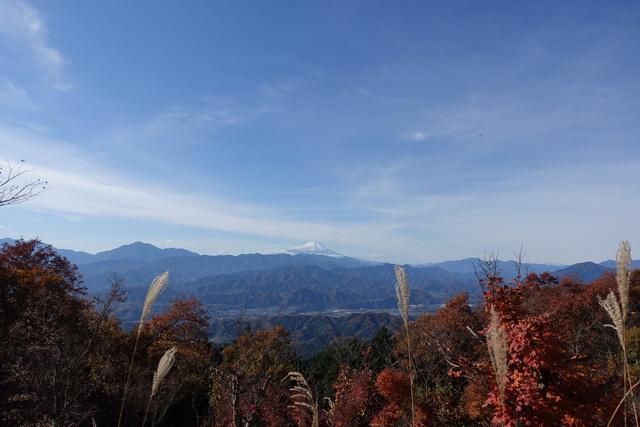 陣馬山から富士山