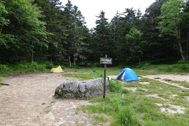 南御室小屋のテント場②