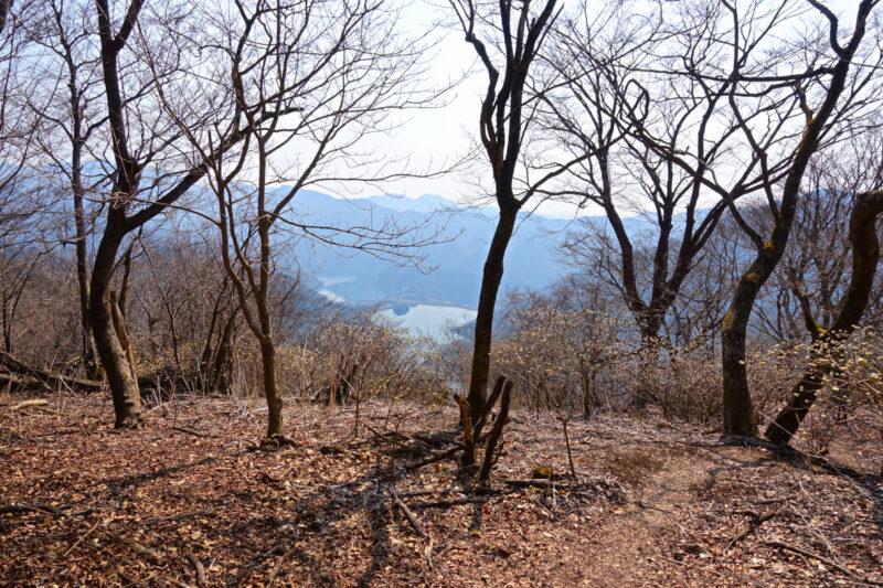 ミツバ岳から丹沢湖