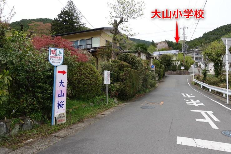 大山小学校バス停付近