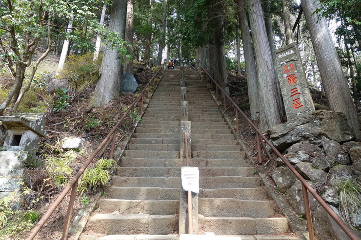 丹沢・大山・阿夫利神社下社~山頂