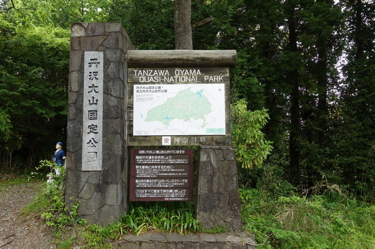 丹沢・大倉~観音茶屋(丹沢大山国定公園)