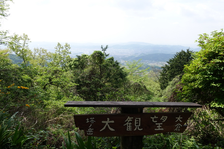 丹沢・観音茶屋~大倉高原山の家(大観峰)