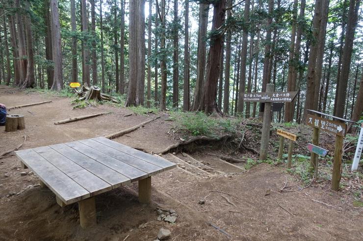 丹沢・大倉高原山の家~見晴茶屋(雑事場)