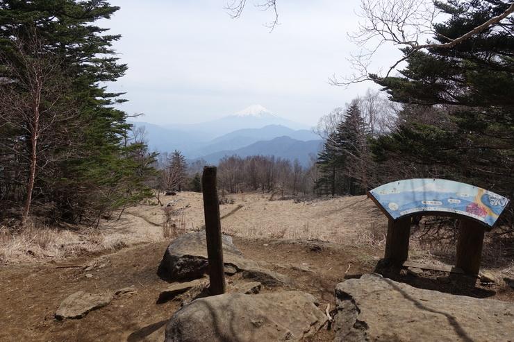 雁ヶ腹摺山の山頂から富士山