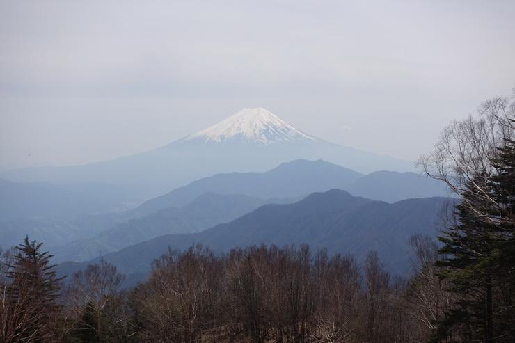 雁ヶ腹摺山の山頂から富士山(ズーム)
