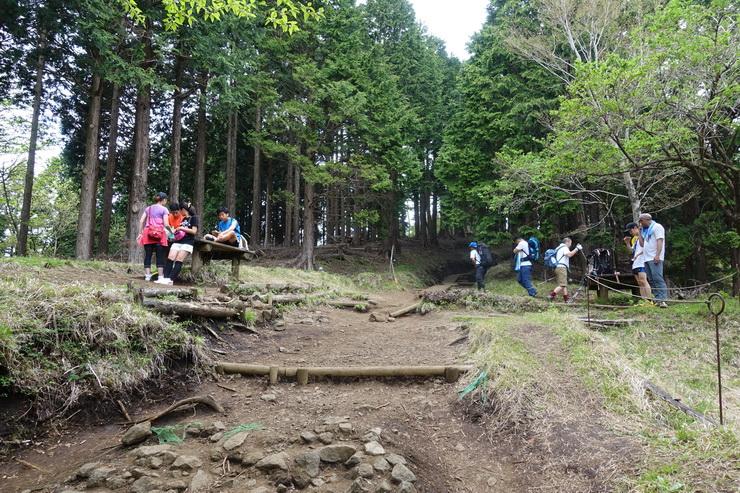 丹沢・駒止茶屋(上の休憩所)