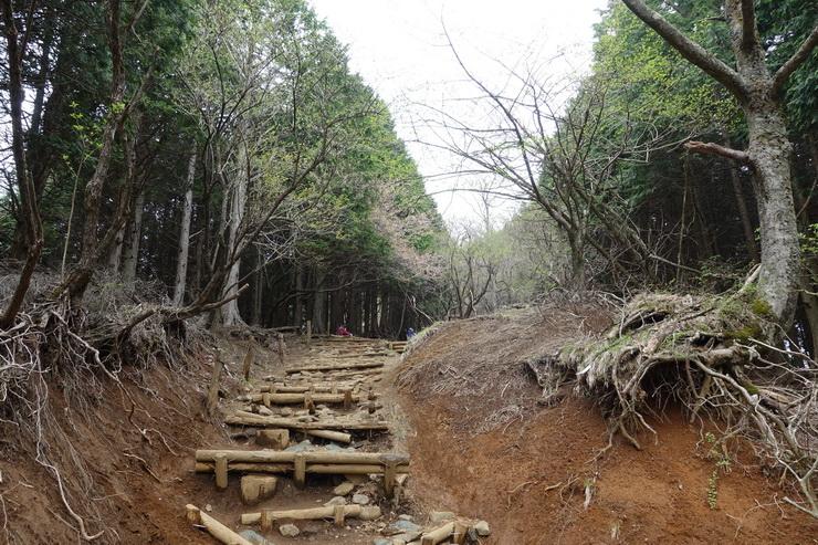 丹沢・堀山の家~花立山荘