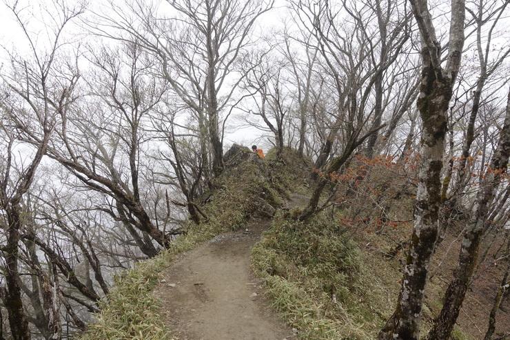 丹沢・花立山荘~塔ノ岳(ヤセ尾根)