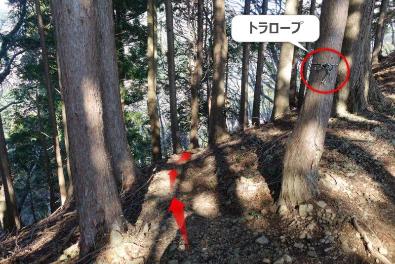 大倉高原山の家の近くの水場(沢)~水場への降り口