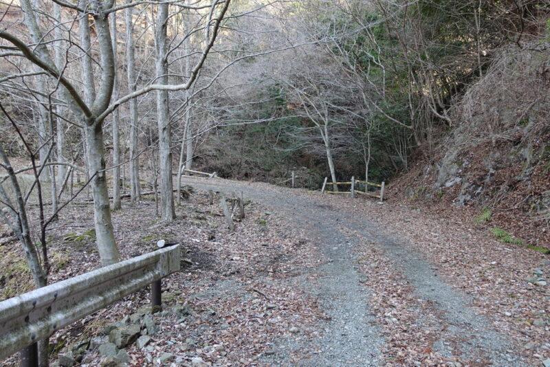 大倉高原山の家の近くの水場(沢)~林道