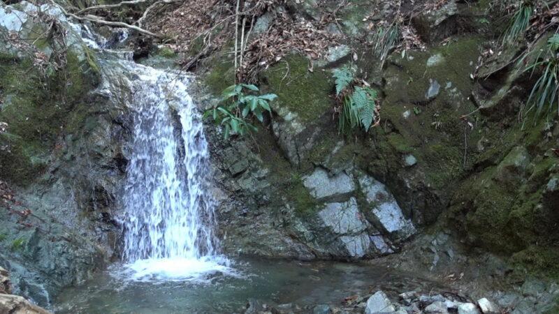 大倉高原山の家の近くの水場(沢)