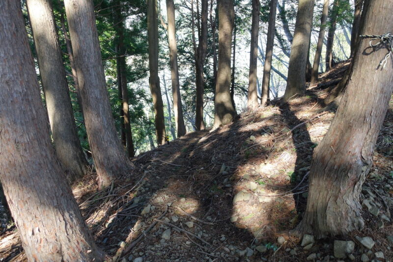 大倉高原山の家の近くの水場(沢)~下り口