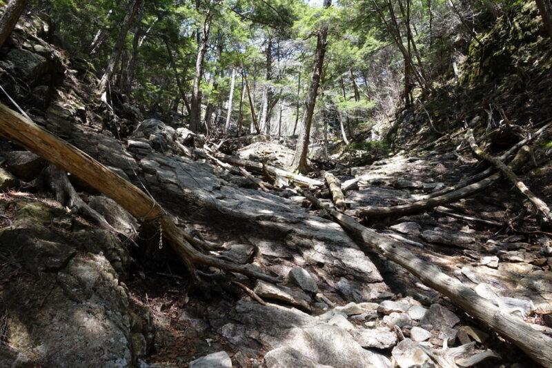 瑞牆山の登山道