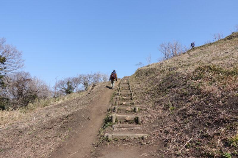 仙元山登山道