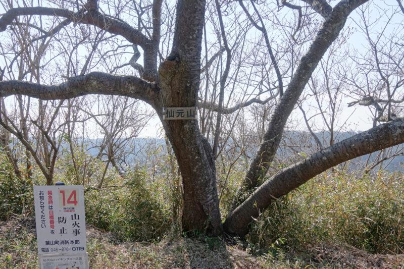仙元山の山頂標識