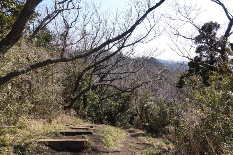 仙元山の山頂から東へ