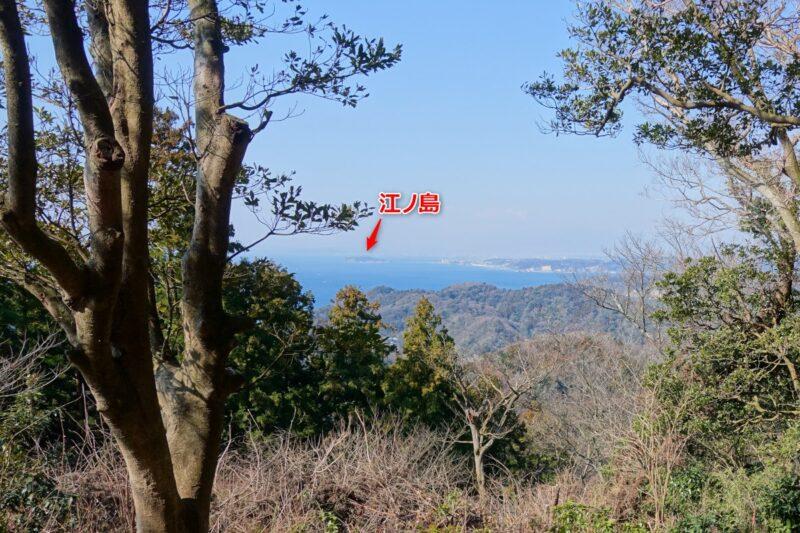仙元山~南尾根、利根山