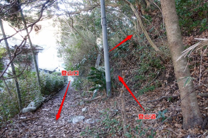 阿部倉山への登山道