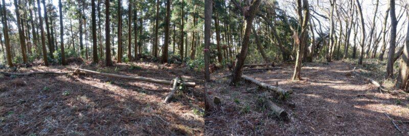 阿部倉山の山頂(丸太のベンチ)